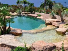 Pool, Waterworld Natural Swimming Pool Designs LaurieFlower 006: Back To Nature With Natural Swimming Pools