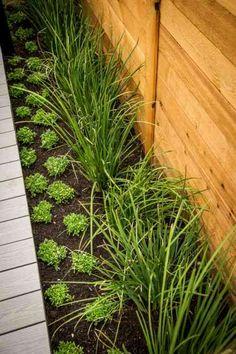 Metal Hanging Planter Box/ Horizontal Fence Planter/ Succulent Wall ...