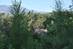 Haus in der Toskana Mountains, Nature, Travel, Tuscany, Rural House, Voyage, Viajes, Traveling, The Great Outdoors