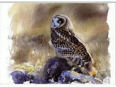 Tradera ᐈ Köp & sälj begagnat & second hand Watercolor Sketch, Watercolor Bird, Wildlife Art, Artist Painting, Bird Art, Animals And Pets, Deer, Sketches, Birds
