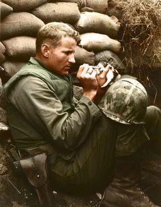 Marine Sergeant Frank Praytor feeding a kitten in Korea in 1953. [550x662]