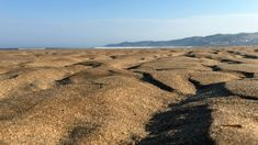 Can you ever have too much sand? #Woolacombe #ndevon