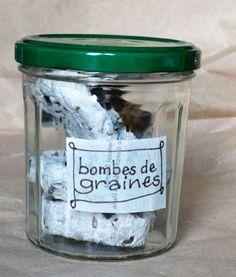 Bombes de graines  |  Ça se passe au jardin