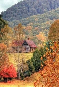 Log Cabin at The Daniel Boone National Park - Kentucky