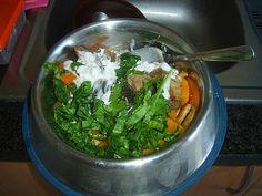 This puppy's breakfast: chicken, pork, beef, butternut squash, spinach, carrot, cottage cheese, yoghurt