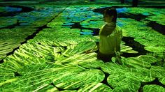Interactive Mapping Installation of Rice Fields  Après Floating Flower Garden, voici « Harmony », la nouvelle installation digitale et interactive du studio japonais teamLab pour la Japan Pavilion Expo Milano 2015. Ils ont reproduit un espace où sont projetées des rizières en mapping sur des plateformes plates blanches qui montent jusqu'aux genoux. Les projections bougent selon le mouvement et la marche du visiteur.