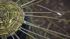 Awesome video for a basket making class. BEAUTIFULLY shot. Must watch!