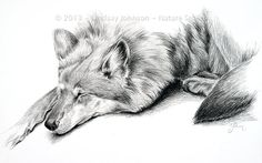 Charcoal Wolf Drawing  Archival Art Print  11x17  by NatureSmiled, $70.00