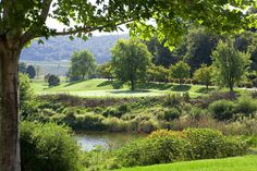 View from the Pro Shop Jack Nicklaus, Golf Courses, Eagle, Tours, River, Shop, Outdoor, Outdoors, Outdoor Games