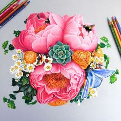 Vibrant Pencil Drawings Bursting With Color by Morgan Davidson - icanbecreative