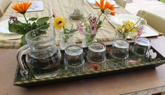 Little Earth Montessori - Come in and make yourself at home