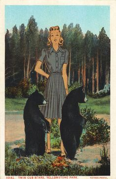 Rosalind and her bears