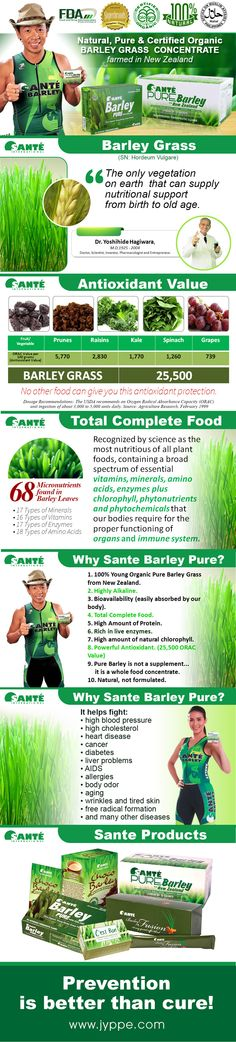 Sante' Barley - Pure, Natural and Certified Organic Barley Grass, Super Foods, New Zealand, Health And Wellness, Organic, Pure Products, Business, Natural, Image