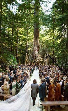 10 Insane Facts About Sean Parker's Enchanted Forest Wedding What a crazy and beautiful wedding. So magical and mystical! Sean Parker's Enchanted Forest Wedding. Redwood Forest Wedding, Enchanted Forest Wedding, Enchanted Wedding Ideas, Sean Parker Wedding, Perfect Wedding, Dream Wedding, Trendy Wedding, Garden Wedding, Elegant Wedding