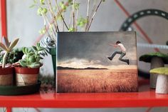 print your instagram photos on tiles from ImageSnap Custom-Printed Ceramic Tiles from ImageSnap, via Design Milk