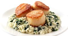 Scallops and Risotto at Benny's Chop House. Just an amazing dish....    www.BennysChopHouse.com