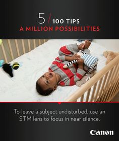 Canon Tip 5/100: To leave a subject undisturbed, use an STM lens to focus in near silence. More photography ideas and cinemagraphs at http://explore-lenses.usa.canon.com/inspire-me/tip5