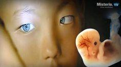 Reconocida ufologa asegura que una nueva raza de humanos habita la Tierra con nosotros - http://misterio.tv/alienigenas/reconocida-ufologa-asegura-una-nueva-raza-humanos-habita-la-tierra