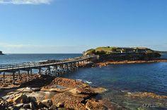 La Perouse Island NSW