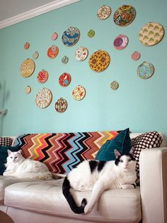 {blue wall, hoops, zigzags, kitties}