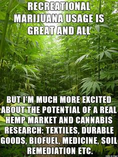 Not to mention the economic boost from tax income and savings of money currently spent on prosecution and incarceration of people who grow, sell, buy, and consume weed.  And the reduction of drug cartel activity and ancillary crimes related to marijuana dealing (theft, murder, etc). Eliminating marijuana prohibition isn't a magic cure for all the issues facing California, but it will sure as hell help!