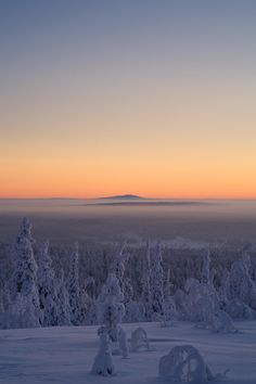 On top of Utsuvaara, near Kittilä, Finland. The coldest weather so far this winter. -38°C / -36.4°F. When the temperatures reach under -30°C, sunsets have that magical pastel glow.