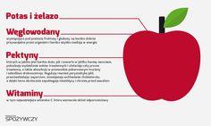 Jabłko - infografika