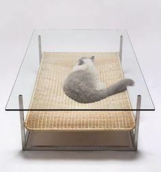 Cat Hammock Coffee Table!
