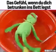 ads ads The feeling when you go to bed drunk . Funny Memes, Jokes, Funny Drunk, Funny Gifs, Comedy Comics, Kermit The Frog, Romantic Pictures, Good Humor, Really Funny