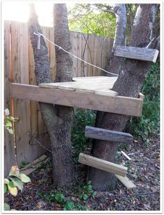 Larry spent the morning building the boys a tree fort. Or really it's more of a tree platform I suppose. But still. It's fun. And the boys are having a blast with it. They climb the little ladder, they stand...