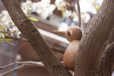 Bird in a tree #architectmade