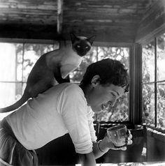 Swedish ceramics artist Lisa Larson and siamese cat, 1959