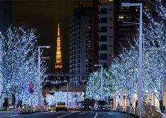 Two-Colored Illumination Magic in Roppongi