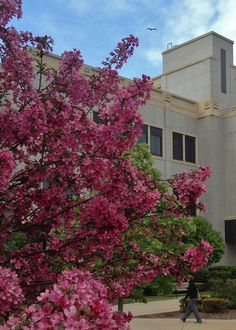 Cudahy Hall at Marquette University.