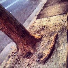 #Padgram The Neighbourhood, Photos, The Neighborhood, Pictures