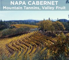 Even within Napa Valley, there's a great diversity to the Cabernet grapes. Join Tor Kenward, who's kicked the dirt in a lot of vineyards, as he describes the distinctly different characters of mountain fruit and valley fruit in this video.