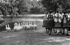 by Elliott Erwitt, Hungary, 1964.