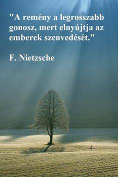 """""""A remeny a legrosszabb gonosz,  legrosszabbgonosz, , mert elnyujtja az emberek szenvedeset. F. Nietzsche."""