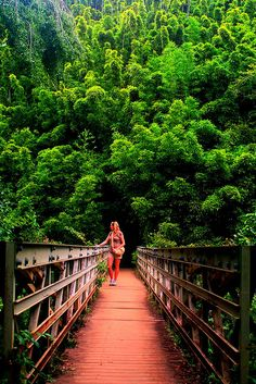 Pipiwai Trail, Maui, Hawaii by okbends Honeymoon Vacations, Hawaii Honeymoon, Vacation Destinations, Dream Vacations, Vacation Spots, Vacation Villas, Trip To Maui, Hawaii Vacation, Maui Hawaii