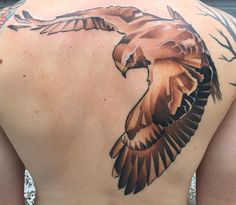 Red tailed hawk by Marc Nelson - Colt's Timeless Tattoos - Madison WI