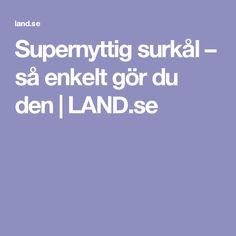 Supernyttig surkål – så enkelt gör du den   LAND.se Land