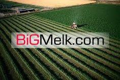 فروش زمین کشاورزی همدان575 هکتاری (40 برگ سند)