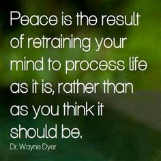 1000+ images about Peace on Pinterest  Peace, War and Buddha