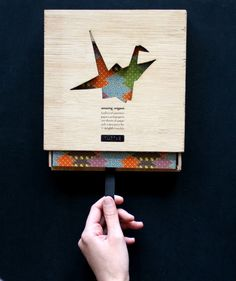 Amazing Origami: packaging design