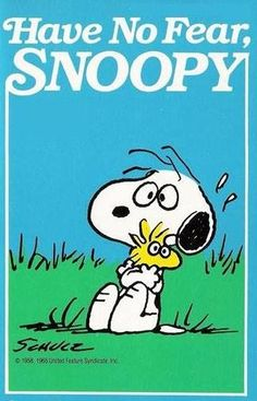 Snoopy and Woodstock / The Peanuts Gang