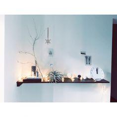 umaimesikuitaiさんの、ディスプレイ,クリスマスディスプレイ,季節の飾り,グリーンのある暮らし,植物,流木,グリーン,キャンドル,古道具,塩系インテリア,塩系インテリアの会,玄関/入り口,のお部屋写真