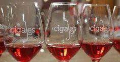 Los vinos Cigales triunfan en la última edición del Mundial del Rosado de Cannes
