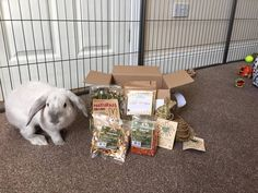 Yummy Dried Carrots & Dried Apples In Our August Box Find Out What Else Is In The Box - https://getbunnybox.com/shop/one-off-bunny-box/?utm_content=buffer24bb3&utm_medium=social&utm_source=pinterest.com&utm_campaign=buffer