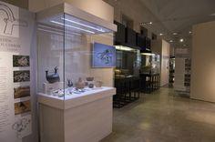 """Museo Nazionale Preistorico Etnografico """"Luigi Pigorini"""" nel Roma, Lazio"""