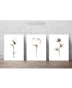 Shabby Chic Set of 3, Cotton Natural Art Print, Cotton Bolls Watercolor…